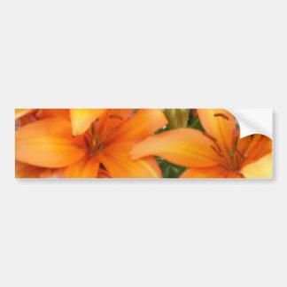 Flores anaranjadas del lirio pegatina para auto