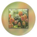 Flores anaranjadas del tulipán plato de cena