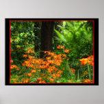 Flores anaranjadas en bosque póster