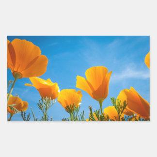 Flores anaranjadas hermosas de la amapola en un pegatina rectangular