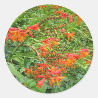 Flores anaranjadas etiquetas redondas