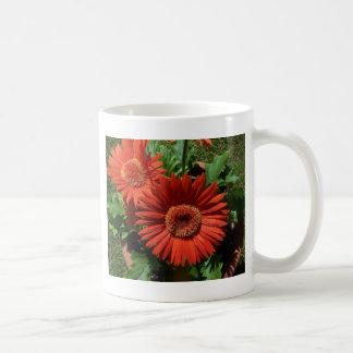 Flores anaranjadas Potted coloridas Taza De Café