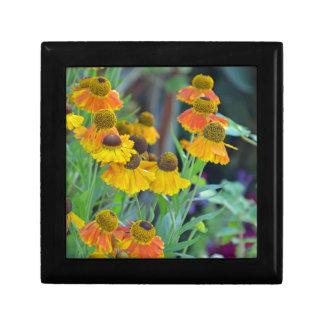 Flores anaranjadas y amarillas del rudbeckia caja de recuerdo