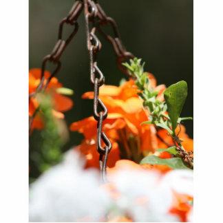 Flores anaranjadas y cierre aherrumbrado de la cad esculturas fotográficas