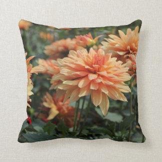 Flores anaranjados de la dalia cojines
