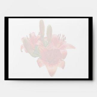 Flores anaranjados del lirio sobres