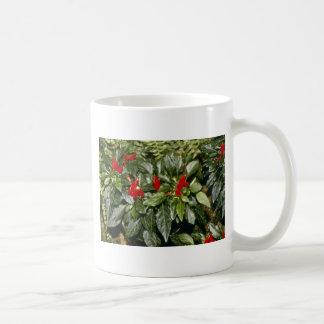 Flores Annuum de la pimienta del navidad del pimie Taza De Café