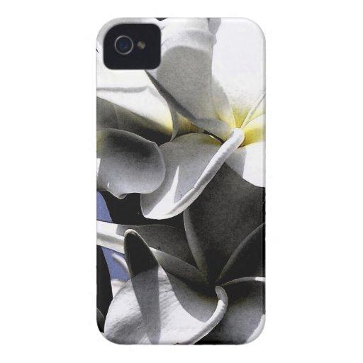 Flores artísticas del Plumeria iPhone 4 Protectores