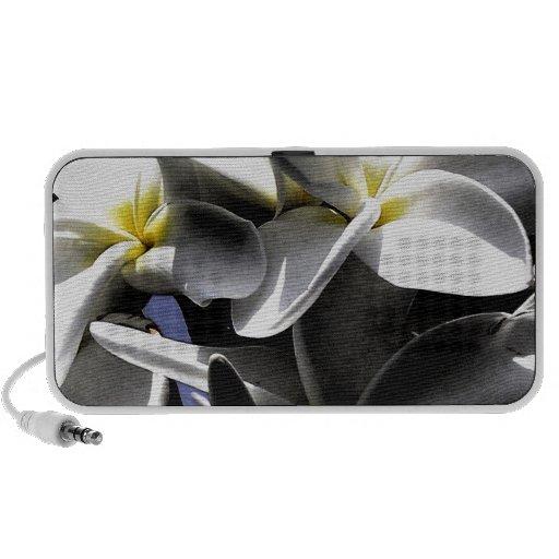 Flores artísticas del Plumeria PC Altavoces