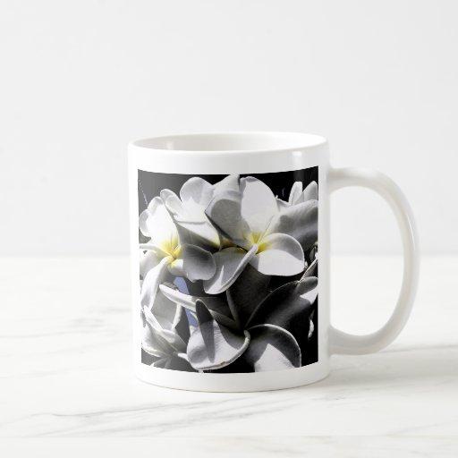 Flores artísticas del Plumeria Taza Básica Blanca