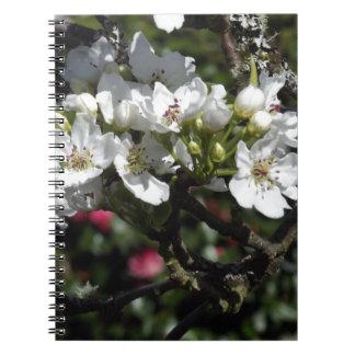 Flores asiáticos de la pera note book