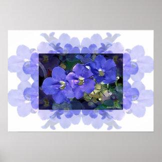 'Flores Azuis' (Blue Flowers) Poster