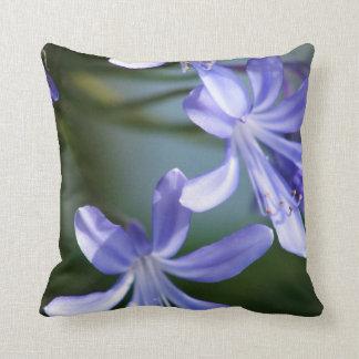Flores azules del Agapanthus Almohada