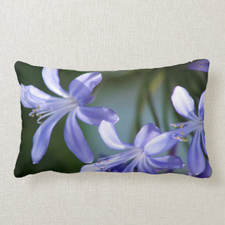 Flores azules del Agapanthus Cojin