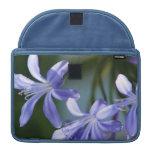 Flores azules del Agapanthus Funda Macbook Pro