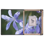 Flores azules del Agapanthus iPad Cárcasa