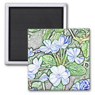 flores azules en la planta verde del grafito del b imanes