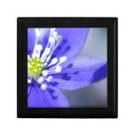 Flores azules hermosas caja de recuerdo