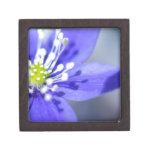 Flores azules hermosas cajas de recuerdo de calidad