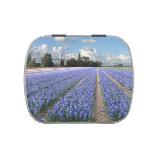 Flores azules Holanda floral de los jacintos Latas De Dulces