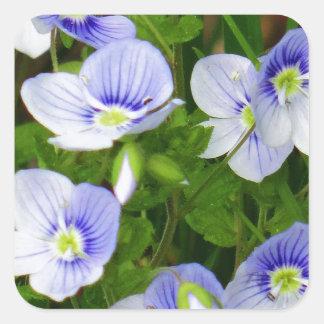 Flores azules lindas, pequeñas pegatina cuadrada