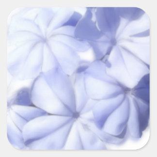 Flores azules calcomanías cuadradas personalizadas