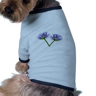 Flores azules ropa para mascota