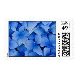 Flores azules franqueo
