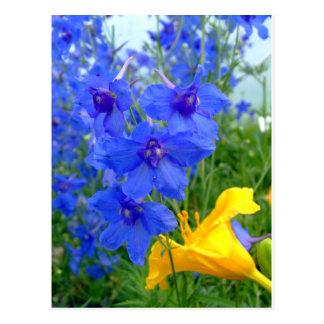 Flores azules y amarillas postal