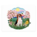 Flores - beagle 4 tarjetas postales