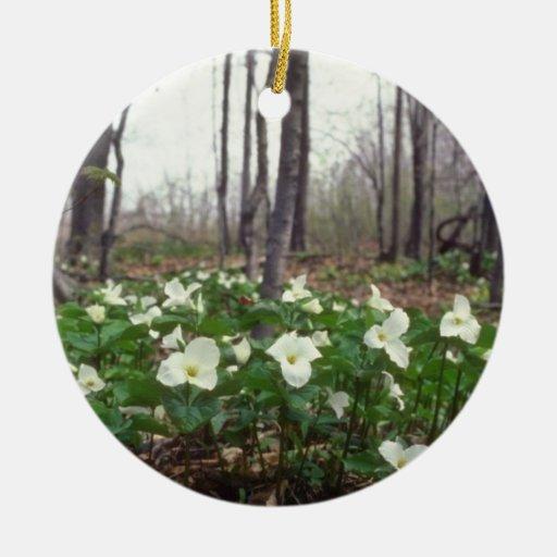flores blancas blancas del Trillium Adorno Redondo De Cerámica