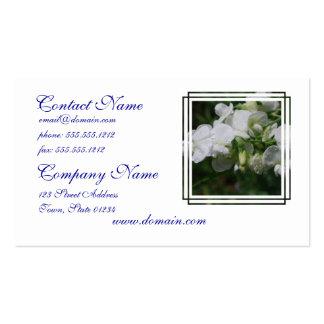 Flores blancas bonitas del guisante de olor tarjetas de visita
