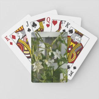 Flores blancas contra un cenador del jardín barajas de cartas