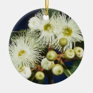 flores blancas de la caoba del pantano eucalipto ornamento de reyes magos