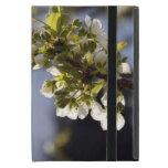 flores blancas de la cereza de la primavera bonita iPad mini carcasa