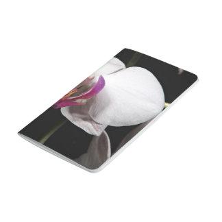 Flores blancas de la orquídea cuadernos