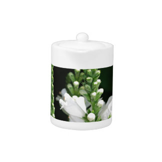 Flores blancas de la planta obediente