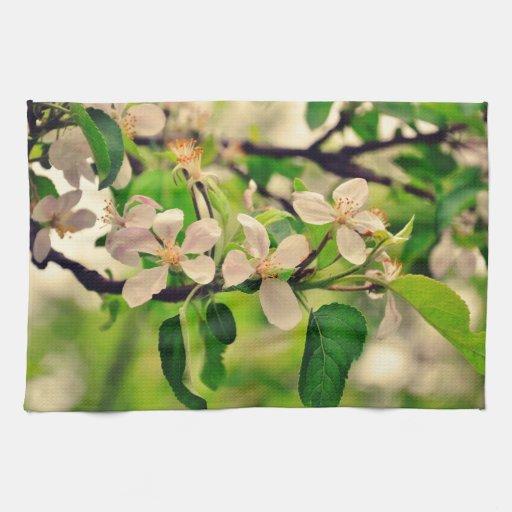 Flores blancas de la primavera toalla de mano