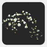 flores blancas de la respiración de los babys cont