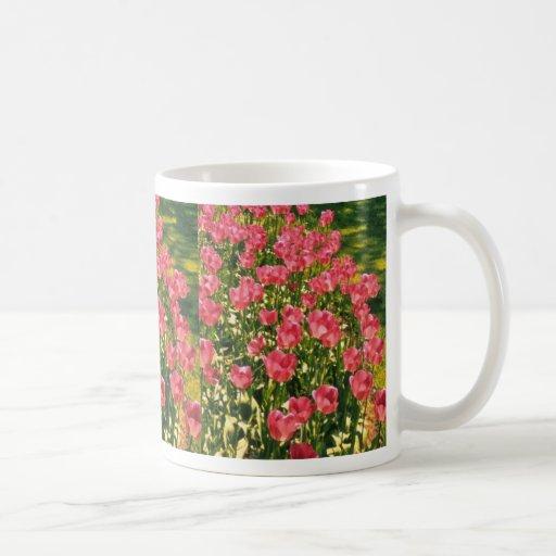 Flores blancas de los tulipanes tazas de café