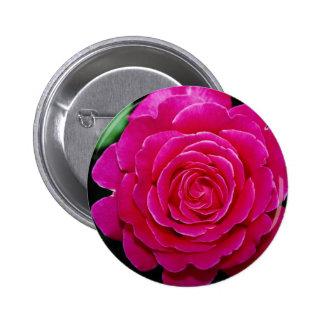 Flores blancas de Tiffany'leaves del rosa de té hí Pin