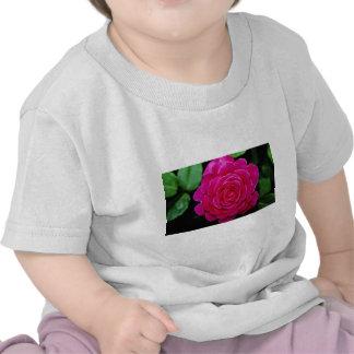 Flores blancas de Tiffany'leaves del rosa de té Camisetas