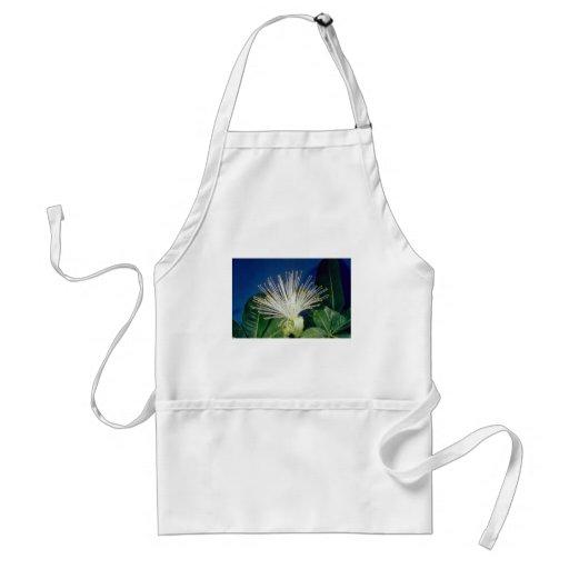 flores blancas del Bombax (aquatica de Pachira) Delantales