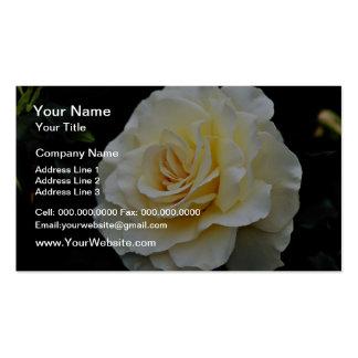 "Flores blancas del ""cordón francés"" de Floribunda Tarjeta De Visita"