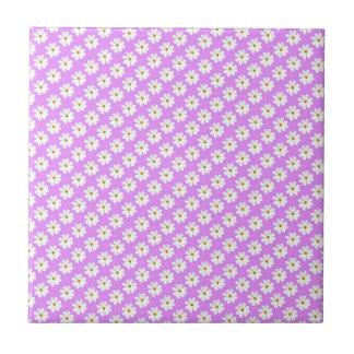 Flores blancas del cosmos con el fondo violeta azulejo ceramica