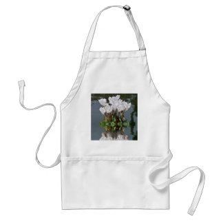 Flores blancas del cyclamen en el agua delantal