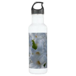 Flores blancas del jacinto