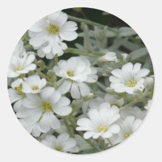 Flores blancas del jardín pegatina redonda