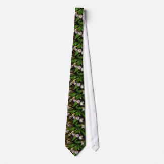 flores blancas del Masdevallia Corbata Personalizada