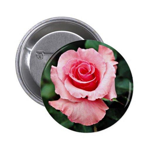 """Flores blancas del """"placer"""" de Floribunda Pin Redondo 5 Cm"""